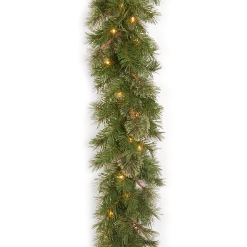 National Tree Company Pre-lit Artificial Christmas Garland | Includes Pre-strung Lights | Atlanta Spruce - 9 ft