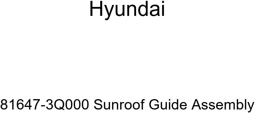 Low price Hyundai Latest item 81647-3Q000 Sunroof Guide Assembly