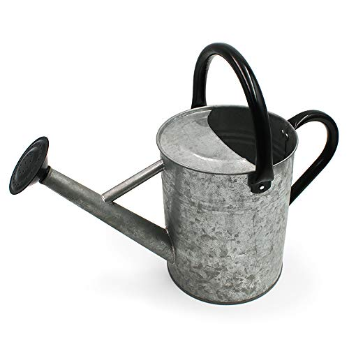 Cesun Metal Watering Can Galvanized Steel Watering Pot with Removable Spray Spout, Movable Upper Handle, 1 Gallon for Outdoors Gardening, Vintage Zinc