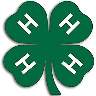JR Studio 4H Green Clover Shaped Logo Sticker - Emblem Insignia ag Agriculture Four h Vinyl Decal Sticker Car Waterproof Car Decal Bumper Sticker