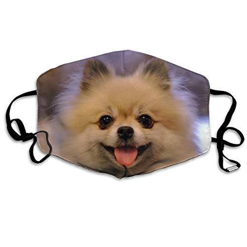 HSJSS New Pomeranian Puppy Unisex Face Covers Waschbare Staubschutzhülle Comfortable Reusable Outdoor Außenbereich One Size