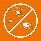 Spinnenabwehr Test
