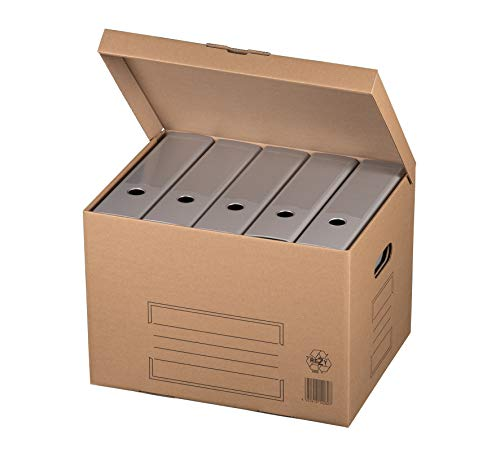 karton-billiger Archivschachteln Aktenkarton Archivkarton Archivbox mit Klappdeckel 10Stück