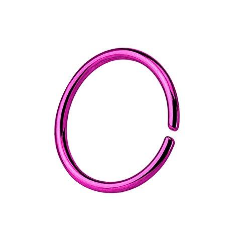 Paula & Fritz® runder biegbarer UNIVERSAL Fake Hoop Ring 8mm lang 1.2mm dick lila Segmentring Septum Tragus Helix Cartilage Nasen-Piercing Ohrklemme Nostril Chirurgenstahl Titan