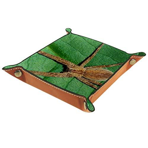 FCZ Wild Medical Arachnid Spider Web - Bandeja de cuero para mesita de noche de escritorio para almacenamiento de joyas, monedero de 20 x 20 cm
