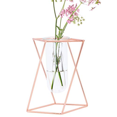 TAECOOOL Florero de Tubo de ensayo de Vidrio con decoración con Marco de Metal geométrico de Oro Rosa, jarrones geométricos para Flores en el Centro de la Mesa de Centro de la Oficina(M-16CM)