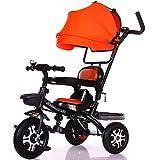 LBBGM Kids Trike 3 en 1 vélo à enfourcher Tricycle pour Enfants avec auvent de Guidon Parent Choix de Couleur Charge maximale 30 kg XG4786