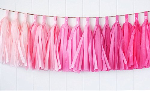 Zorpia 15pcs Tissue Paper Tassels Garland, Mixed 3 Colors(Pink+ light pink+ rose)