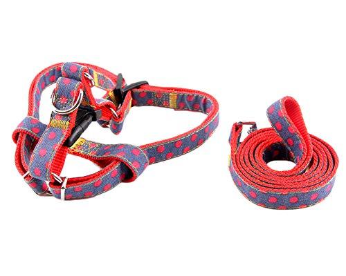 LiangZhu Hund Dot Cowboy Haustier Hundeleine Dog Leads Führleine Schleppleine Joggingleine Trainingsleine Rot XL