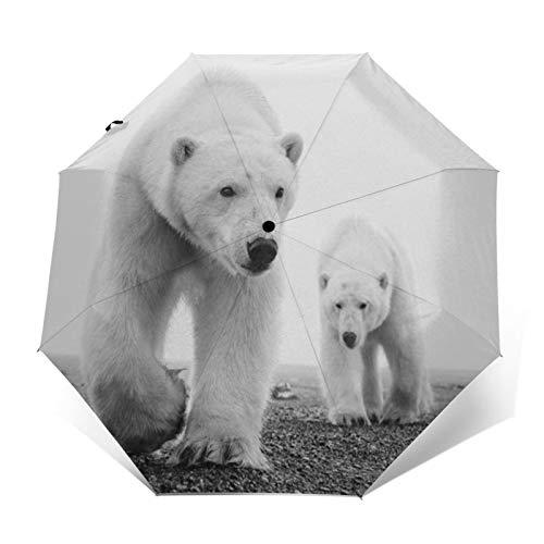 TISAGUER Paraguas automático de Apertura/Cierre,Cuadro de Arte Moderno en Blanco y Negro,Madre Oso Polar y bebé Oso Polar Caminando por la Tierra,Paraguas pequeño Plegable a Prueba de Viento
