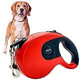 Edipets, Correa Perro Extensible / Retráctil, 3, 5 y 8 Metros, Cinta Flexible para Adiestramiento y Paseo, para Perros Pequeños, Medianos y Grandes (Rojo, 5 Metros)