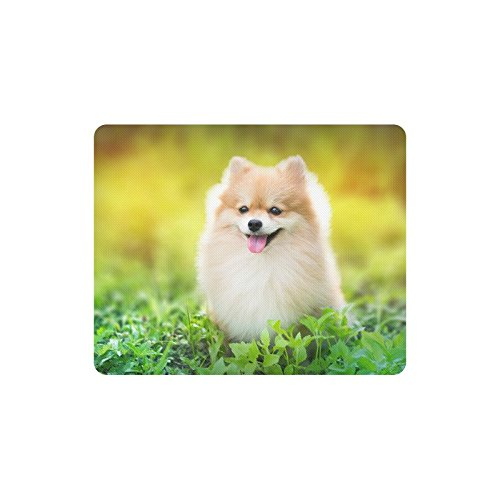 InterestPrint Cute Fluffy Pomeranian Puppy Dog in Spring Park Rectangle Non Slip Rubber Mouse Pad Gaming Mousepad Mat with Designs