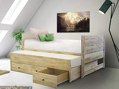 Bedz King All in One Bed with Twin Trundle and 3 Built in Drawers, Rustic Honey