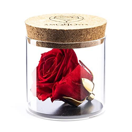 Amoroses Bijou – Rosa estabilizada de eterna con copa chapada en oro...