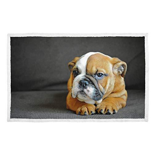 Manta para perro con impresión cálida, manta para cachorros de Bulldog Inglés
