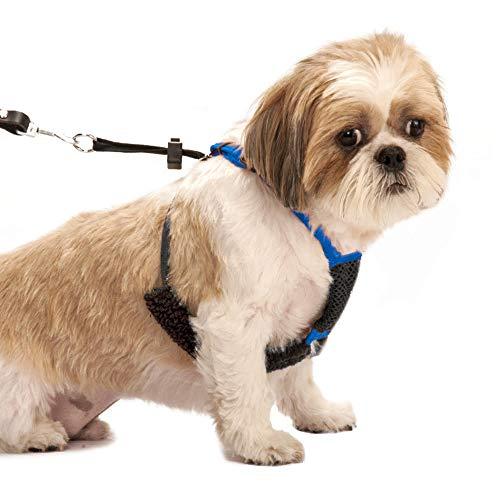 SPORN Mesh Non Pull Dog Harness Small Blue,...