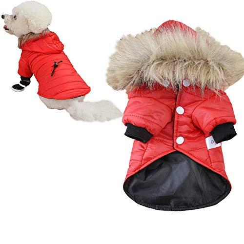 WENLIANG 原文 Haustier Mantel Daunenjacke Mit Kapuze,Wintermantel Hundebekleidung FüR Kleine Hunde,Winterjacke Winter Warme Hundekleidung Haustier Daunenjacke XS rot
