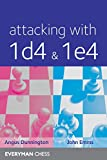 Attacking with 1d4&1e4