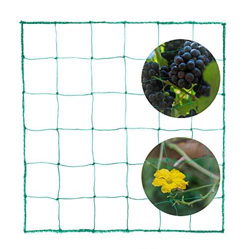 ECHOAN Rete per Piante rampicanti, Giardino HDPE Rete, per Vegetali e Frutta Protezione Traliccio per Piante, Dimensioni1,8 * 2,7M Maglia 10 * 10 cm