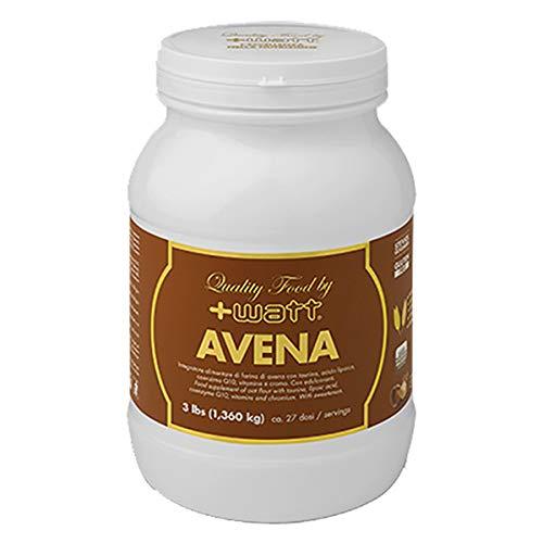 AVENA Quality Food 1,36 kg (Gusto: Nocciola) +WATT Integratori