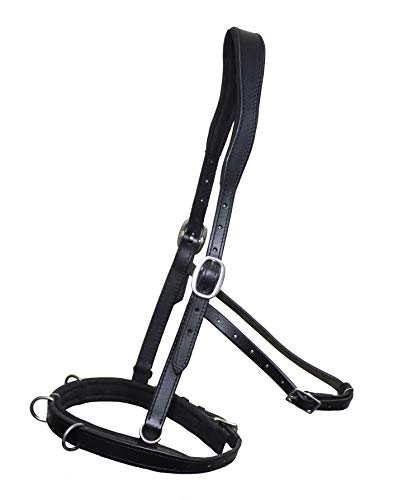 DP Saddlery's Soft Feel Leather Cavesson | Stainless Steel Hardware & Supple Nubuck Leather | 4 Buckle Adjustable Straps | Award-Winning Construction | Horse Training & Lunging Equipment | SF29