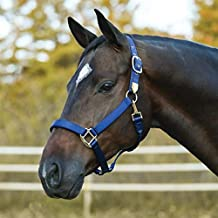 """Adjustable Crown and Curb Designed Avoid Halter Rubs Dura-Tech Deluxe Fully Padded Nylon Horse Halter 1/"""" Double Ply Nylon Various Sizes /& Colors"""