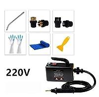 GAONAN-URG 110V 220V温度スチームクリーナーのためのフードエアコンキッチンツール蒸気クリーナーの洗浄機EU / AU/イギリス/米国 GAONAN-URG (Color : 220V black 1)