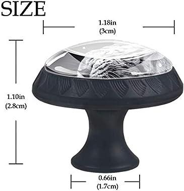 "4 Pack Round Cabinet Hardware Knob Tiger Face Eyes - 1-37/100"" Diameter - knobs for Dresser Drawers"