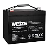 Weize 12V 75AH Deep Cycle Battery for Wayne ESP25 WSS30V Backup Sump Pump,...