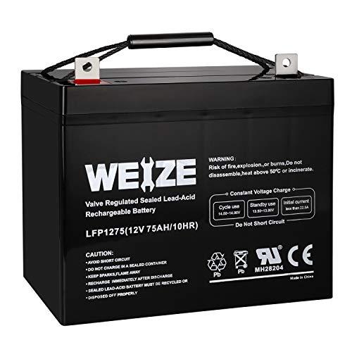 Weize 12V 75AH Deep Cycle Battery for Wayne ESP25 WSS30V Backup Sump Pump, Trolling Motor,...