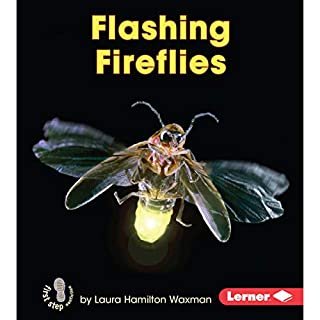 Flashing Fireflies cover art