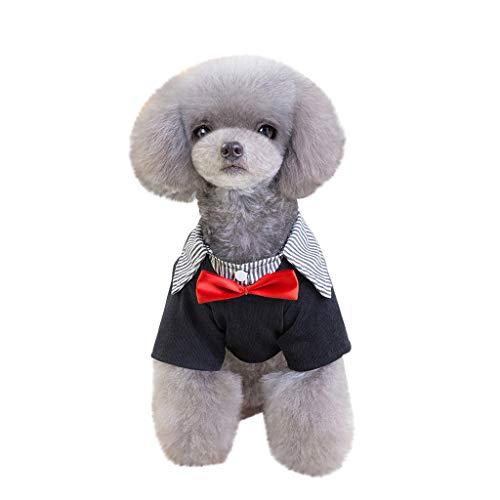 TUDUZ Hochzeitsanzug/-Kleidung, Kleine Hund, Smoking-Kostüme, Formelle Party-Outfits, passt Chihuahua, Pudel, Pommern, Yorkshire Terrier, Bichon Frise, Cocker Spaniel(Large,Rot)