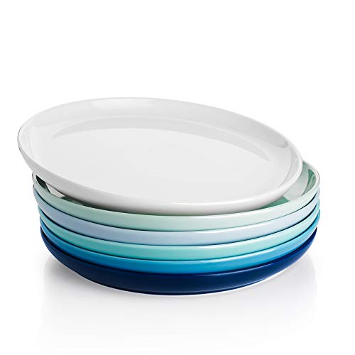 Sweese 154.003 Porcelain Round Dinner Plates - 10 Inch - Set of 6, Cool Assorted Colors
