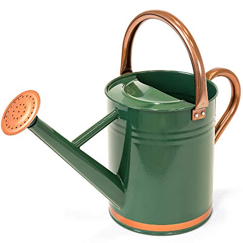 Best Choice Products 1-Gallon Lightweight Galvanized Steel Gardening Watering Can w/O-Ring, Top...