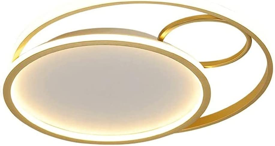 GUOGUOSM LED Ceiling Light for Elegant Room Desi Acrylic Creative Living San Antonio Mall