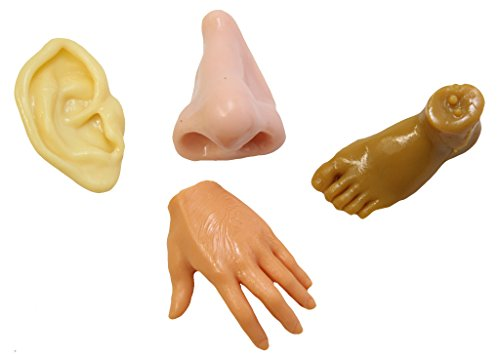 Curious Minds Busy Bags Body Parts Stretchy Fidgets - Ear, Hand, Foot Nose - Anatomy