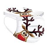 GJKK 10Stück Einmal-Mundschutz, Erwachsene Mundschutz mit Motiv Weihnachten Bunt MNS Mund Nasenschutz 3 Lagig Atmungsaktiv Bandana Halstuch für Damen Männer