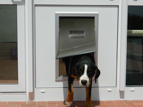 8in1 DD9XL-Pro, isolierte Hundeklappe mit...