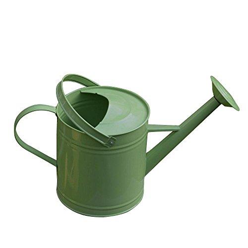 NACHEN Watering Pot Metal Galvanized Gardening Kettle Activité Head Dual Use 6L, green
