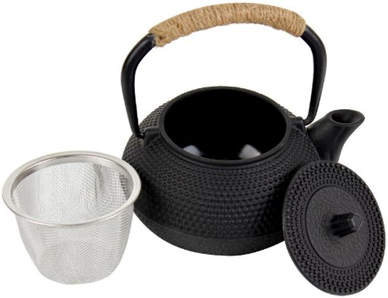 Asiatische Edel Teekanne mit Teesieb 0,35 Liter Gusseisen mit Hitzeschutz am Griff um Emaille innen