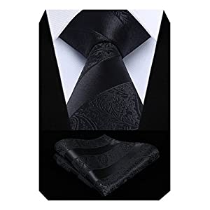 HISDERN Extra Long Floral Paislry Tie Handkerchief Men's Necktie & Pocket Square Set