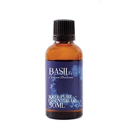 Mystic Moments | basilico olio essenziale–50ml–100% puro