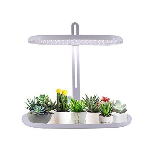 WMQ Luz de Crecimiento de Plantas, Kit de Inicio de jardín de Hierbas para Interiores con Luces de plantación LED, Jardinera de Jardinero Inteligente para Cocina casera, Altura Ajustable