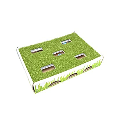 Petstages Grass Patch Hunting Box Cat Toy by Outward Hound