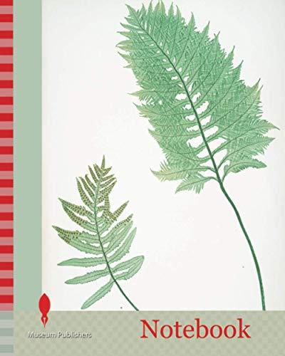 Notebook: A. Polypodium vulgare cambricum. B. P. vulgare crenatum. The common polypody, Bradbury, Henry Riley (1821-1887), (Illustrator), 1857, ferns of Great Britain and Ireland