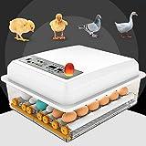 InLoveArts Incubadora de 16 Huevos Nacedora automática Digital con Control de Temperatura/Giro automático para incubar Huevos de Pollo de Pavo/Pato/Ganso/codorniz
