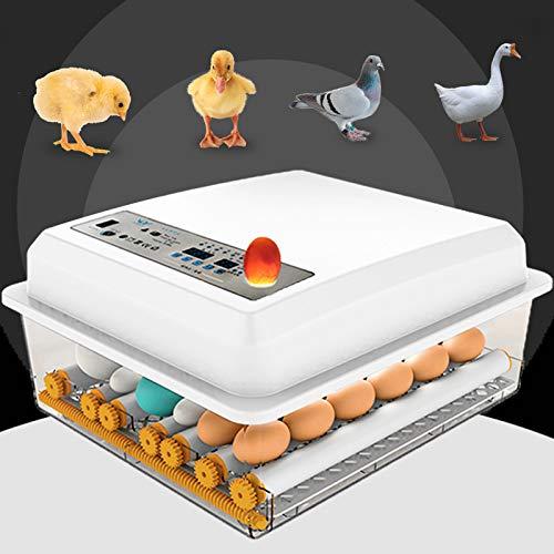 InLoveArts Incubadora de 16 Huevos Nacedora automática Digital con Control de Temperatura Giro automático para incubar Huevos de Pollo de Pavo Pato Ganso codorniz