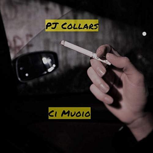 PJ Collars