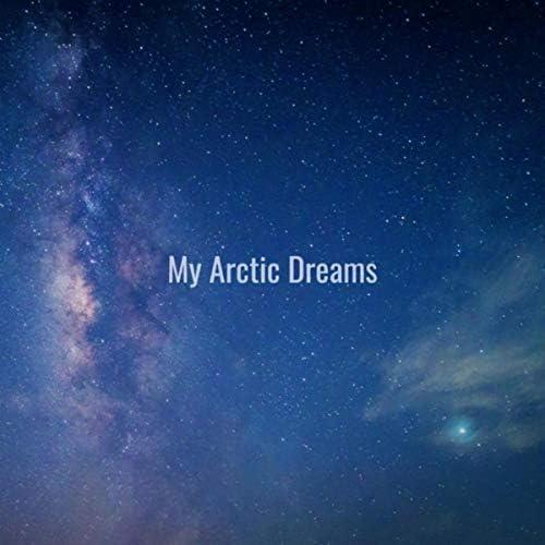 My Arctic Dreams