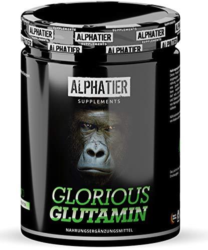 L-GLUTAMIN Pulver 500g Ultrapure - 99,95{e5be51feb3a3f885f6acf02d4e7513fa498c0b39d662190cc85b1405c9a84f20} rein - MAXIMALE DOSIERUNG - ALPHATIER Glorious Glutamine Powder - Fitness & Bodybuilding - ohne Zusatzstoffe, Zucker, Gluten & Laktose